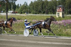 Rikard N Skoglund. Arikvbild.
