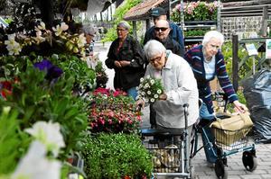 På tur med Väntjänsten. Marianne Eriksson och Stina Boström gillar att få komma till Plantmarknaden och botanisera bland blomstren.