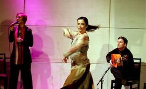dans, sång och gitarr. Swedish Flamenco Fusion Trio består av en enda instrumentalmusiker på spansk gitarr: Erik Steen. Till hans toner sjunger Gunnel Mauritzson och den sista hörnstenen i trion består av dansösen Maria Pröckl.
