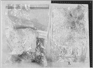 Totalt 37 paket med amfetamin fanns i knarkgömman i Hallstahammar. Foto: ur polisens förundersökning