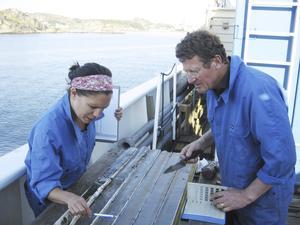 mätningar. SGU har mätt halter av miljögifter i havsbottnen på 16 mätstationer från Västerhavet till norra Bottenviken, bland annat i Kosterhavets Nationalpark i Bohuslän.
