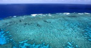 Det stora barriärrevet i Australien är hotat, enligt Unesco.