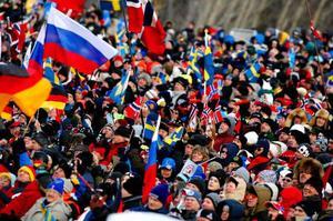 Ska det bli lika stor publik till världscupen i skidskytte som det var under fjolårets VM-tävlingar? Hotellbokningar i Östersund tyder på det.Foto: henrik flygare