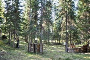 I en skogsglänta i Nylandsböle på södra sidan Indalsälven i Hålland växer paintballparken fram. Målet är att öppna i slutet av september.