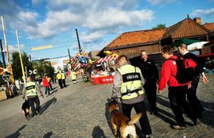 Schäfern Astor och den belgiska vallhunden Ingo hjälper till att tömma området. Under kvällen kommer de att patrullera järnvägsspåren för att se till att ingen råkar illa ut. Foto: Lars-Eje Lyrefelt