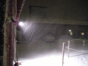 Första snön, det blev lite kaosl
