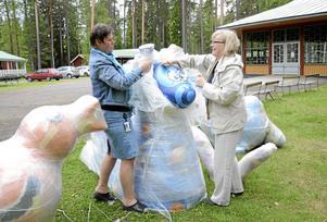 Nyanlända. Med gemensamma krafter tar Hällefors kommuns turistchef Jessica Melin och Ann-Christine Nordqvist, ordförande i Krokborns vänner, av emballaget från skulpturerna som får sin plats i Krokbornsparken.