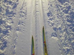 Jakob Persson tog den här bilden när han var ute och åkte skidor i Alsen.