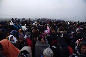 329 flyktingar som befinner sig i Grekland och Italien ska flyttas till Estland. Hittills har ingen kommit trots att esterna är redo.