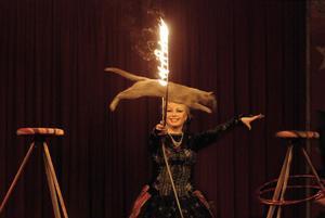 Katter är inte lika lätta att dressera som en hund. Men här flyger i alla fall en cirkuskatt genom en brinnande ring, i årets upplaga av Cirkus Brazil Jack.