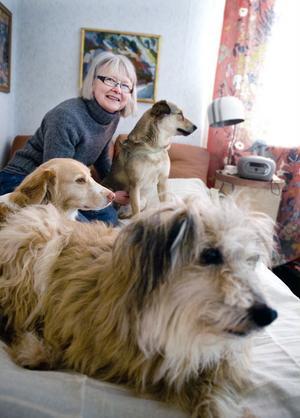 Lycklig blir Britt-Marie Malm när hon möts av vänlighet och omtänksamhet och när olycksdrabbade och misshandlade djur får nya goda hem.