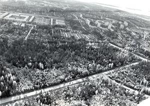 Bjurhovda 11 oktober 1983.