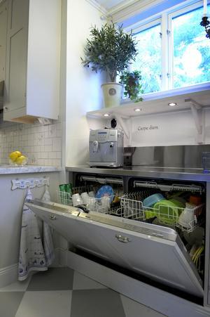 Många familjer drömmer om dubbla diskmaskiner i köket. Kanske blir det standard i framtiden?