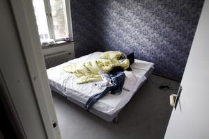 Den 17-åriga dottern har sovit i lägenheten under större delen av tiden och agerat bete för att saneringen ska verka. Hittills har det inte hjälpt och hon blev biten så sent som förra veckan.