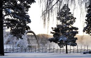 Stugubron en kall Januari dag. (Stugun)