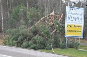 Nedfallna träd välkomnar till Kumla