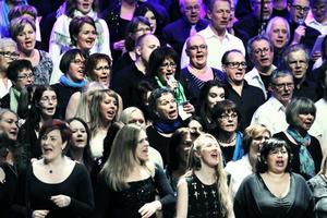 Det går inte att ta miste på att det är glädjefyllt att sjunga.