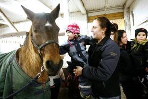 Melissa Brolin, tre år, gillade hästarna i stallet.