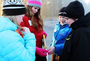 Linnea Palmqvist, Amanda Eriksson, Arnold Lif och Emil Karlsson från Centralskolan i Hoting diskuterar resultatet av en mätning de har gjort innan de lämnar in den till tävlingsledningen.