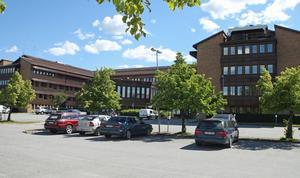 Sju personer, bara män, har hitills sökt tjänsten som kommunchef i Sollefteå.