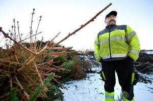Roland Björk arbetar som samordnare på Fågelmyra avfallsanläggning. Enligt honom är julgranarna inget större problem för Fågelmyra avfallsanläggning.