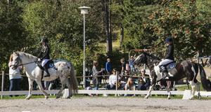 Ridelever från Sundsvalls fältrittklubb.