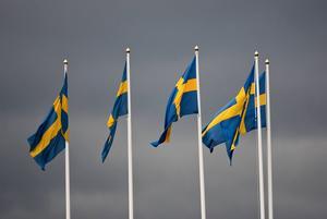 Bo Grapenskog är inte nöjd över sakernas tillstånd i Sverige.