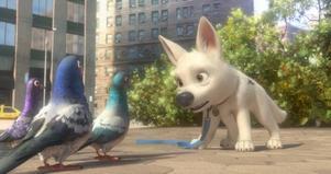 """""""Bolt"""" är den senaste av storfilmer från Disney och Pixar. Ikväll har den Sverigepremiär."""