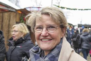 Regeringen var representerad av Kristina Persson (S) från Frösön. Men ministern för strategi, framtidsfrågor och nordiskt samarbete var där privat.