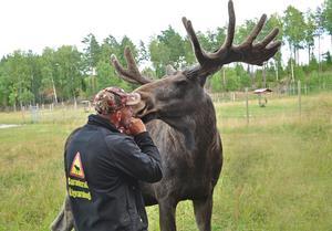 Fin närkontakt mellan djur o människa.