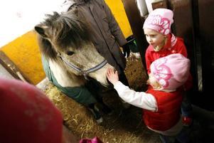 Systrarna Ella och Tyra Zetterqvist, fem respektive tre år, har sett fram emot att börja på ridlekis. Ella går redan på hästskötarutbildning.