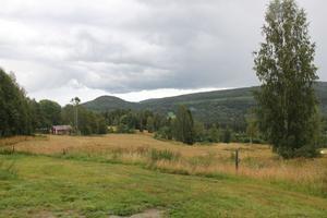 Kommunstyrelsen är positiva till förslaget att bygga bostäder i Häre.