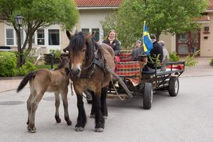 Maria Carlsson höll nordsvensken Tatanka i tömmarna. Fölet Hälsing sprang tryggt bredvid.