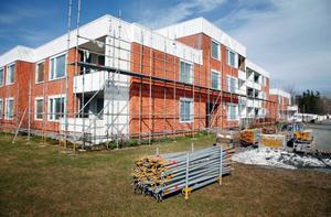 Nu har Östersundsbostäder satt igång bygget i Valhall. Åtta hyreshus kommer att få en extra våning – totalt 64 nya lägenheter.