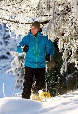 Att vandra med snöskor blir allt vanligare i den svenska naturen. Flera fjällanläggningar arrangerar turer och har speciella turförslag för snöskovandring.