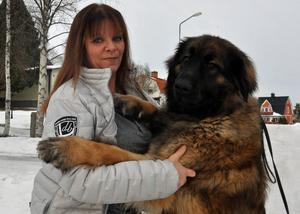 Gullan tror mycket på sin unga tik Diva som har blivit lite av en favorit bland hennes hundar.