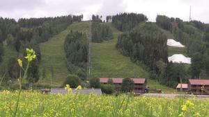 Kungsbergets
