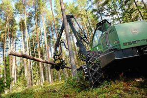 Ett aktivt skogsbruk möjliggör ett liv på landsbygden, motverkar klimatförändringar och bidrar till att hålla hela Sverige levande.