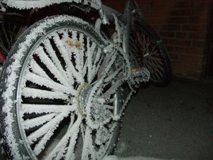 Bilden är tagen runt december då det var som kallast i Lugnvik. Den visar min cykel som står i fastlåst i en tunnel (därför inge snö på marken) med lite för mycket frost på. När jag kom utanför lägenheten en tidig morgon och fick se min cykel bland många andras med två centimeter frost på. Då springer man efter kameran, detta var en syn jag var tvungen att föreviga! Det som jag känner är coolast med min vinterbild är nog att man verkligen ser hur frosten har spridit sig utför cykeldäcket och sedan på alla ekrar. Till och med cykelkedjan är full med frost! Man ser, speciellt på kedjan hur frosten har