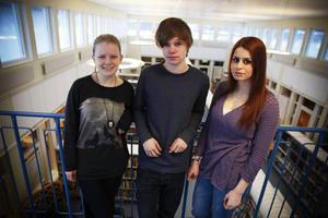Anitra Gudmundsdotter, Jesper Gustafsson och Mercedes Mezher går i nian på Vallaskolan. De har precis sökt gymnasieutbildningar.