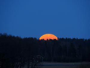 Det var en magnifik fullmåne som steg upp över skogen bortom flygplatsen på Hässlö på lördagskvällen 16/3. Det var så häftigt att följa Månen på sin väg upp på himlavalvet.Det svåra är att klura ut var Månen kommer upp, för det varierar från dag till dag och vädret är ju naturligtvis också en viktig faktor om det skall bli några Månbilder eller inte. Denna kväll stämde dock alla kriterier.