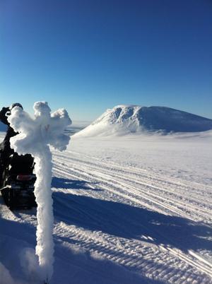 Snö finns det gott om och det lockar förstås skoteråkare som vill njuta av naturen. Fotograf: Pelle Näslund