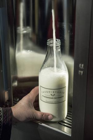 Visthusboden är först i Dalarna med mjölk i lösvikt, en konära upplevelse.