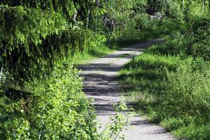 Gåbingon är två kilometer lång. Promenaden går längs den nu gröna Sunnanvägen.