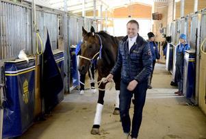 Jan Halberg, sportchef på Wången, gläds åt att tidigare stjärnhästen Rolling Stones flyttar till Wången.