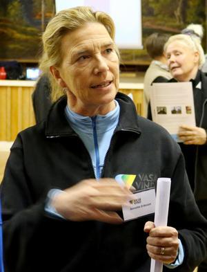 Annette Eriksson, vd för Vasa Vind, menade att ett eventuellt veto från någon kommun i det här läget skulle strida mot alla upptänkliga regelverk: