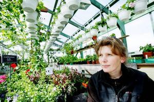 """Drömmen är ett större växthus i gammeldags stil. """"Mitt växthus är 40 kvadrat och i början tänkte jag väl aldrig att jag skulle växa ur det. Men det gör man"""", säger Marie."""
