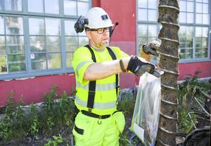 Jonas Hilmerson skrapar ner jordprov i en påse.