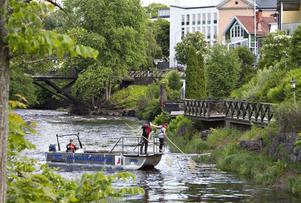 Bedövar fisk. Mikael Carlstein kör elfiskebåten och skickar ut elstötarna som bedövar fiskarna. När de sedan flyter upp till ytan plockar Marcus Lindgren och Christofer Hård upp dem med sina håvar