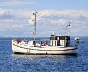 M/S Gran, med tre tums ek i skrovet,  har lämnat Mellanfjärden.